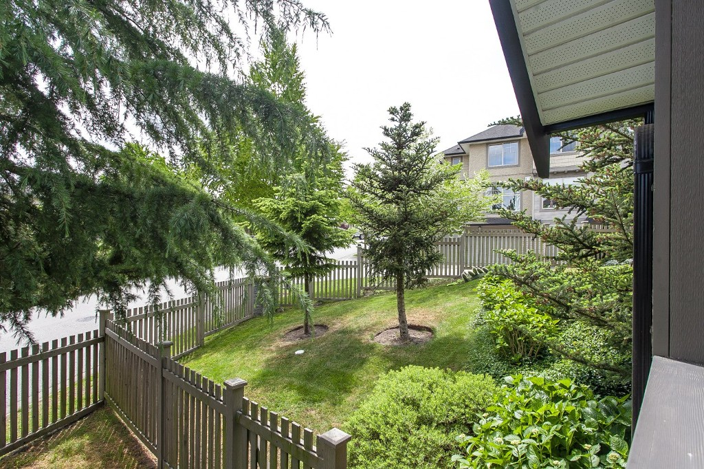 "Photo 37: 92 15152 62A Avenue in Surrey: Sullivan Station Townhouse for sale in ""Uplands at Panorama Place"" : MLS® # R2072531"