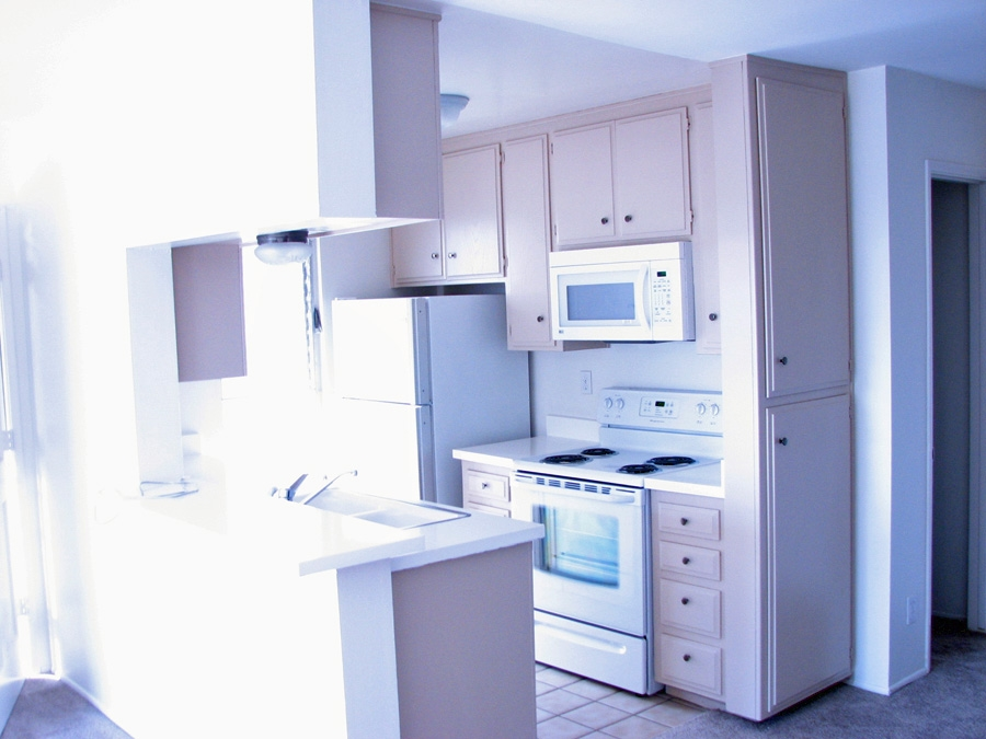 Photo 4: PACIFIC BEACH Apartment for rent : 2 bedrooms : 962 Loring Street #1A in San Diego
