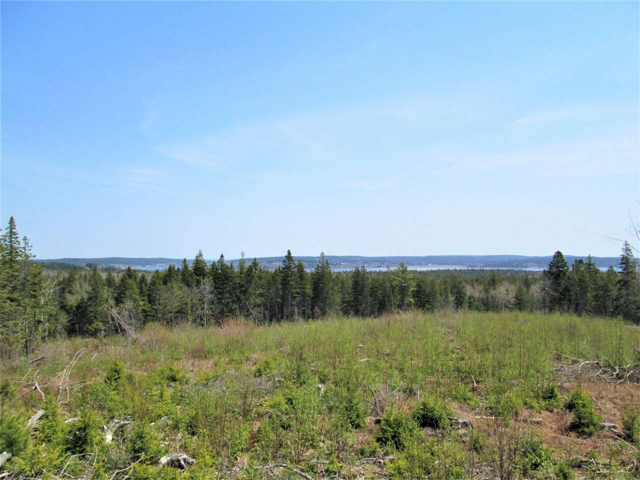Main Photo: 3 Lots Hwy 331 Dublin Shore in Dublin Shore: 405-Lunenburg County Vacant Land for sale (South Shore)  : MLS® # 201712817