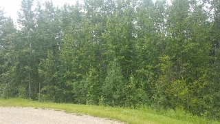 Main Photo: 26 465070 RGE ROAD 20: Rural Wetaskiwin County Rural Land/Vacant Lot for sale : MLS® # E4074789