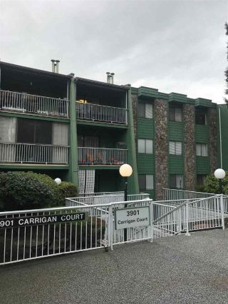 "Main Photo: 204 3901 CARRIGAN Court in Burnaby: Government Road Condo for sale in ""LOUGHEED ESTATES II"" (Burnaby North)  : MLS® # R2235493"