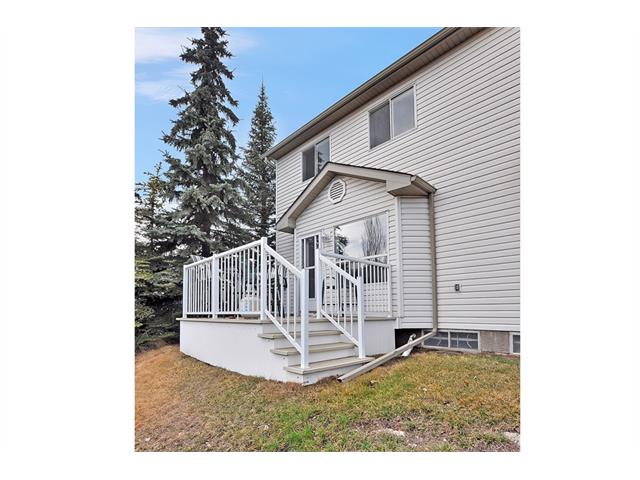 Photo 23: 339 MT DOUGLAS Manor SE in Calgary: McKenzie Lake House for sale : MLS(r) # C4003534