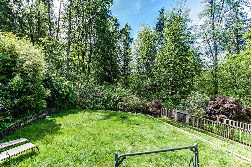 Photo 16: 24426 MCCLURE Drive in Maple Ridge: Albion House for sale : MLS® # R2067948