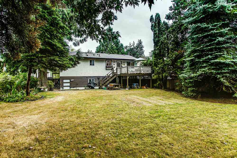 Photo 12: 21097 GLENWOOD Avenue in Maple Ridge: Northwest Maple Ridge House for sale : MLS® # R2205159