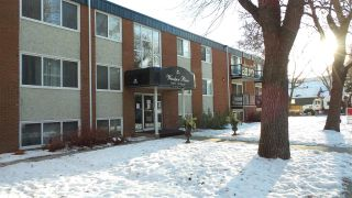 Main Photo: 204 10415 93 Street in Edmonton: Zone 13 Condo for sale : MLS® # E4089839