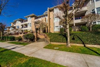 "Main Photo: 113 1999 SUFFOLK Avenue in Port Coquitlam: Glenwood PQ Condo for sale in ""Key West"" : MLS® # R2249189"
