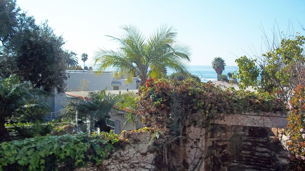 Photo 10: LA JOLLA Home for sale or rent : 3 bedrooms : 5720 CHELSEA