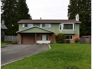 Main Photo: 20273 49TH Avenue in Langley: Langley City House for sale : MLS®# F1433860
