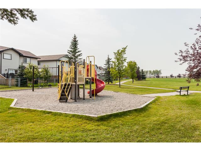 Photo 43: 40 CHAPALINA Manor SE in Calgary: Chaparral House for sale : MLS® # C4027797
