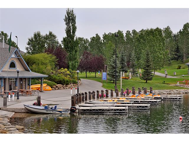 Photo 47: 40 CHAPALINA Manor SE in Calgary: Chaparral House for sale : MLS® # C4027797