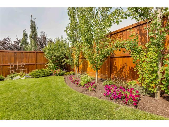 Photo 34: 40 CHAPALINA Manor SE in Calgary: Chaparral House for sale : MLS® # C4027797
