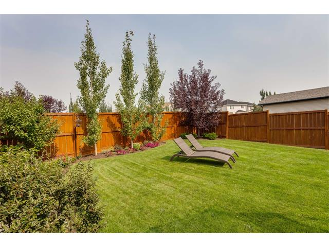 Photo 32: 40 CHAPALINA Manor SE in Calgary: Chaparral House for sale : MLS® # C4027797