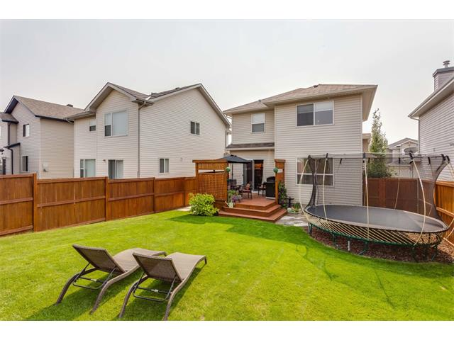 Photo 36: 40 CHAPALINA Manor SE in Calgary: Chaparral House for sale : MLS® # C4027797