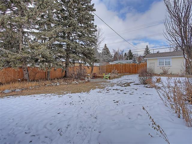 Photo 15: 4520 21 Avenue NW in Calgary: Montgomery House for sale : MLS® # C4102515
