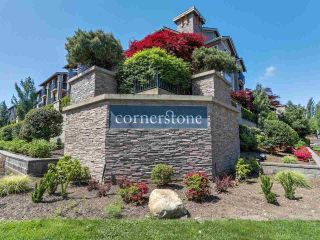 "Main Photo: 209 21009 56 Avenue in Langley: Salmon River Condo for sale in ""Cornerstone"" : MLS®# R2267751"