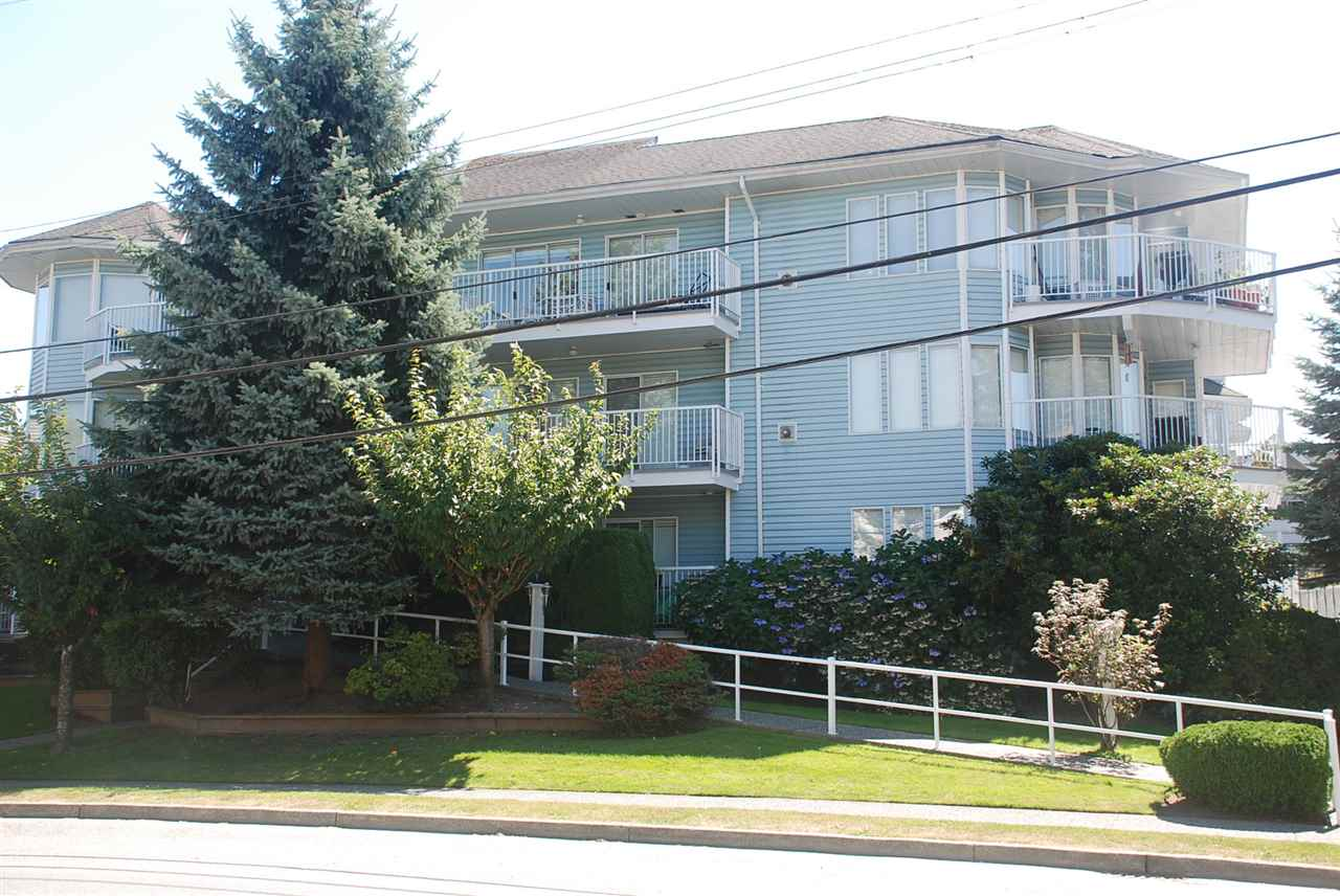 "Main Photo: 205 2050 COQUITLAM Avenue in Port Coquitlam: Glenwood PQ Condo for sale in ""WEDGEWOOD"" : MLS® # R2101053"