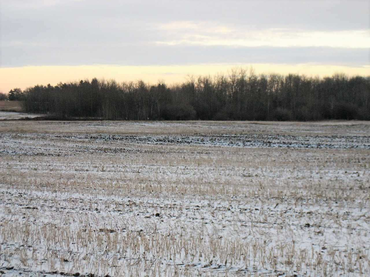 Main Photo: 57202 Hwy 44: Rural Sturgeon County Rural Land/Vacant Lot for sale : MLS®# E4109772