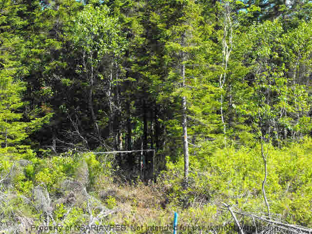 Main Photo: LOT 4 COOKS BROOK DIVERSION HWY 332 in Bayport: 405-Lunenburg County Vacant Land for sale (South Shore)  : MLS® # 5028510
