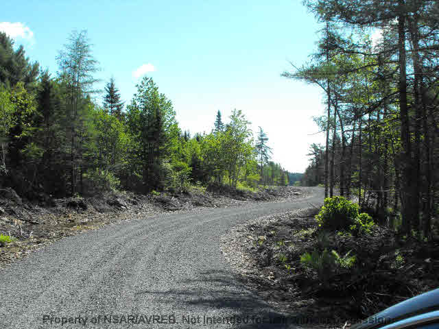 Photo 4: Photos: LOT 4 COOKS BROOK DIVERSION HWY 332 in Bayport: 405-Lunenburg County Vacant Land for sale (South Shore)  : MLS® # 5028510