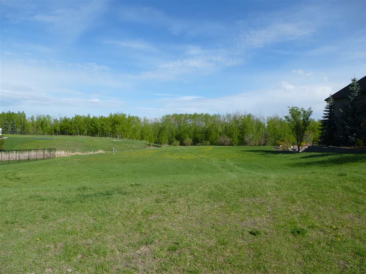 Photo 4: 60 53217 RGE RD 263 Road: Rural Parkland County Rural Land/Vacant Lot for sale : MLS(r) # E4065068