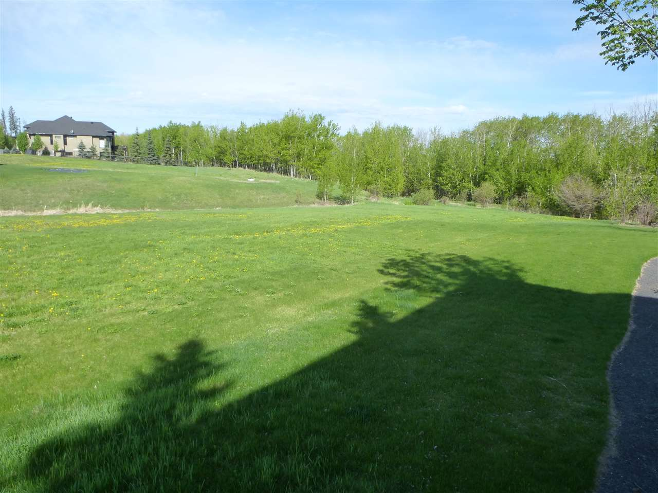 Photo 10: 60 53217 RGE RD 263 Road: Rural Parkland County Rural Land/Vacant Lot for sale : MLS(r) # E4065068