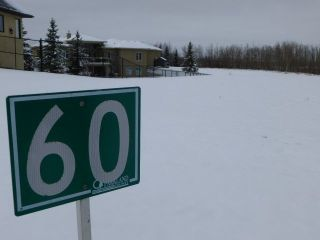 Main Photo: 60 53217 RGE RD 263 Road: Rural Parkland County Rural Land/Vacant Lot for sale : MLS® # E4065068