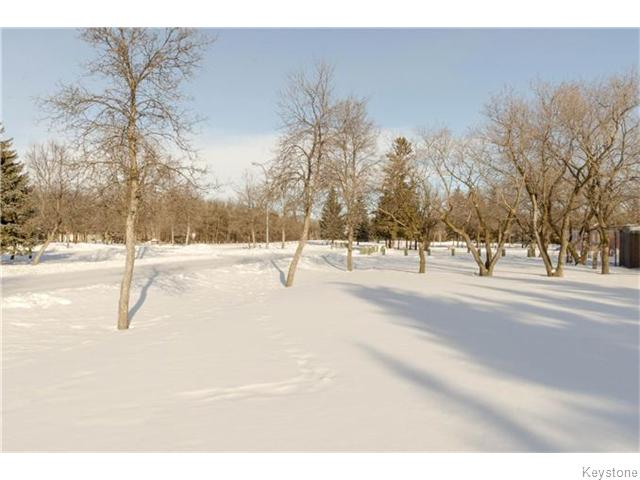 Photo 20: 19 Radium Cove in WINNIPEG: North Kildonan Residential for sale (North East Winnipeg)  : MLS(r) # 1601477