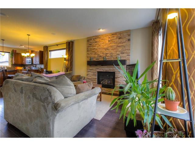 Photo 8: 15 SKYVIEW SPRINGS Crescent NE in Calgary: Skyview Ranch House for sale : MLS® # C4062075