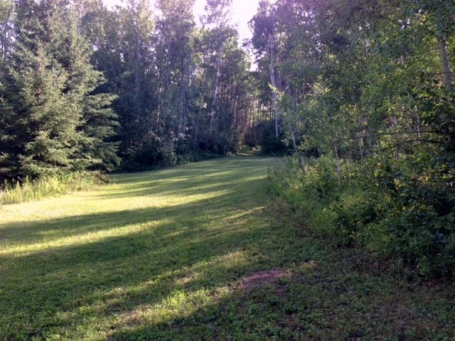 Main Photo: Range Road 123 Twp Rd 602: Rural Smoky Lake County Rural Land/Vacant Lot for sale : MLS(r) # E4042436