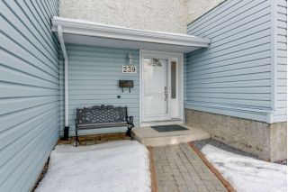Main Photo: 239 CALLINGWOOD Place in Edmonton: Zone 20 Townhouse for sale : MLS® # E4090272