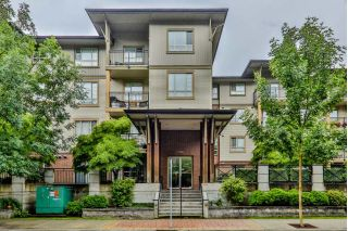 "Main Photo: 113 2346 MCALLISTER Avenue in Port Coquitlam: Central Pt Coquitlam Condo for sale in ""THE MAPLES"" : MLS®# R2313862"