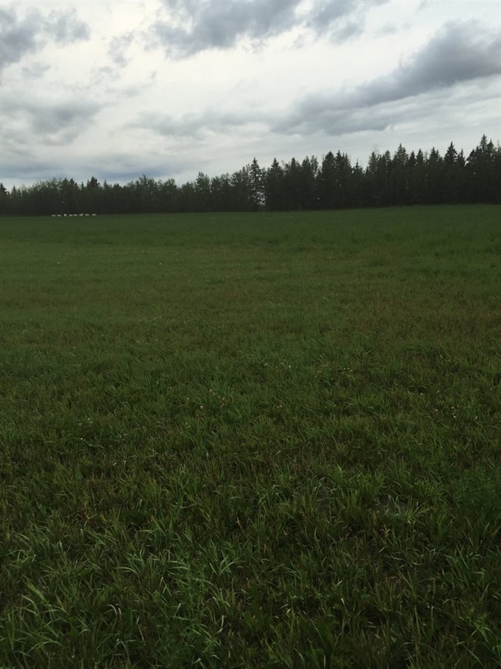 Main Photo: RR 13 Twp 500: Rural Leduc County Rural Land/Vacant Lot for sale : MLS® # E4065533