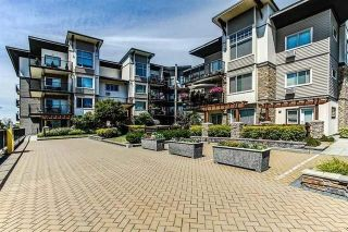 "Main Photo: 309 11935 BURNETT Street in Maple Ridge: East Central Condo for sale in ""KENSINGTON PARK"" : MLS® # R2237018"