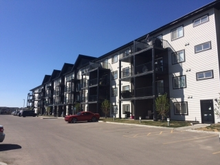 Main Photo: 120 508 ALBANY Way in Edmonton: Zone 27 Condo for sale : MLS(r) # E4053336