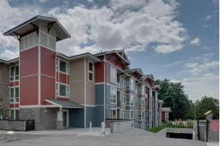 "Main Photo: 408 2242 WHATCOM Road in Abbotsford: Abbotsford East Condo for sale in ""THE WATERLEAF"" : MLS®# R2263533"