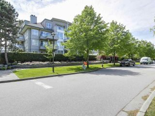 "Main Photo: 115 5800 ANDREWS Road in Richmond: Steveston South Condo for sale in ""THE VILLAS"" : MLS®# R2269016"