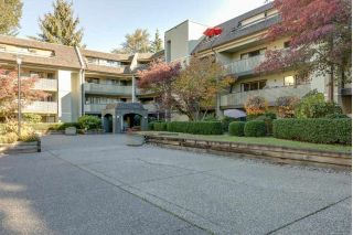 "Main Photo: 408 1210 PACIFIC Street in Coquitlam: North Coquitlam Condo for sale in ""GLENVIEW MANOR"" : MLS®# R2314767"