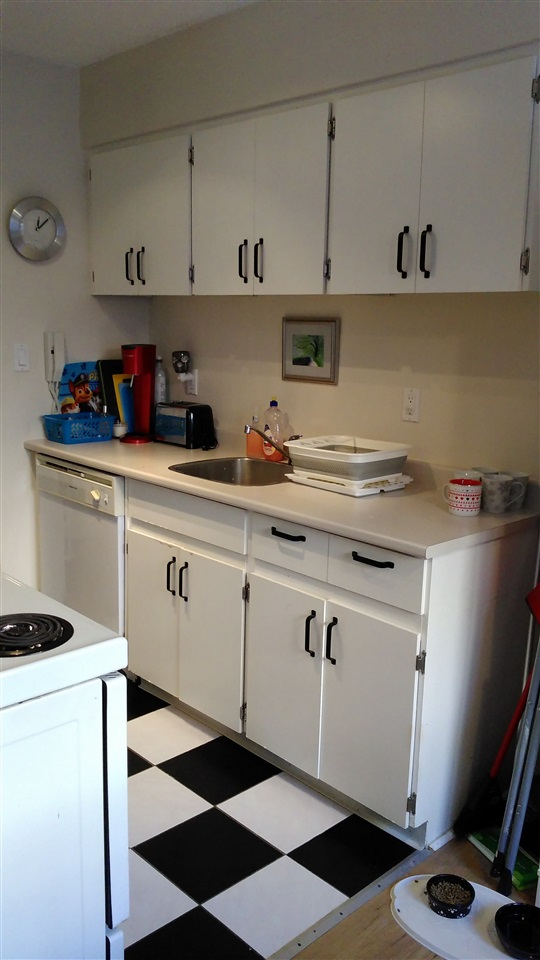"Photo 6: 23 2437 KELLY Avenue in Port Coquitlam: Central Pt Coquitlam Condo for sale in ""ORCHARD VALLEY"" : MLS® # R2127328"