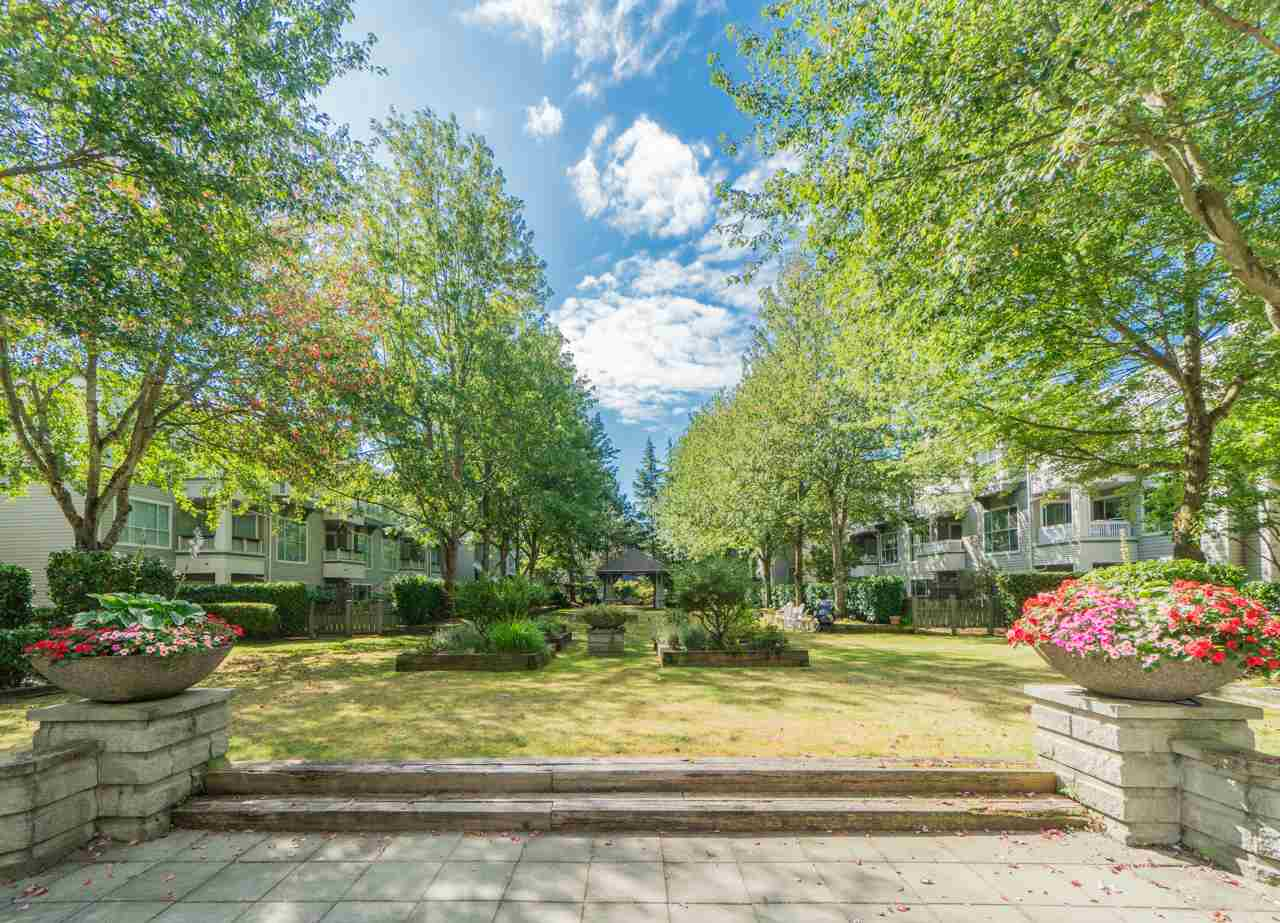 Main Photo: 115 8880 JONES Road in Richmond: Brighouse South Condo for sale : MLS® # R2203982