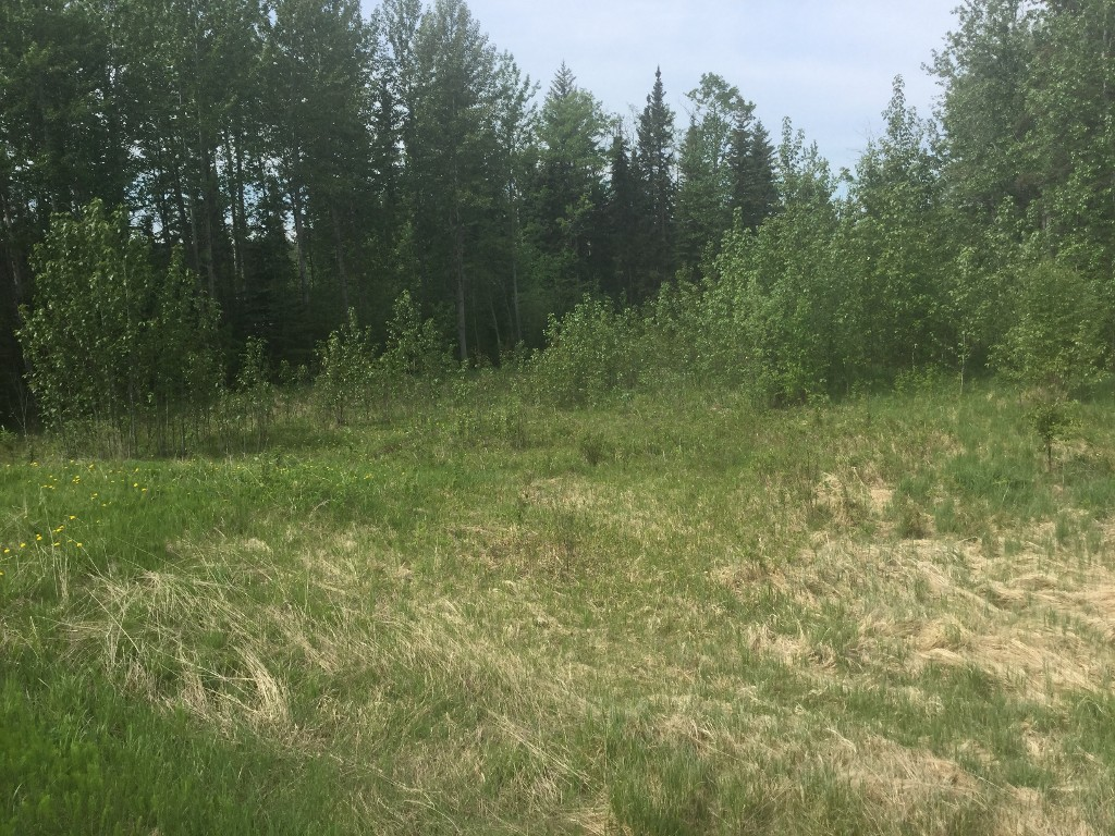 Main Photo: 113053A Bison Road in Whitecourt: Land (Commercial) for sale (Whitecourt Rural)  : MLS® # 43675