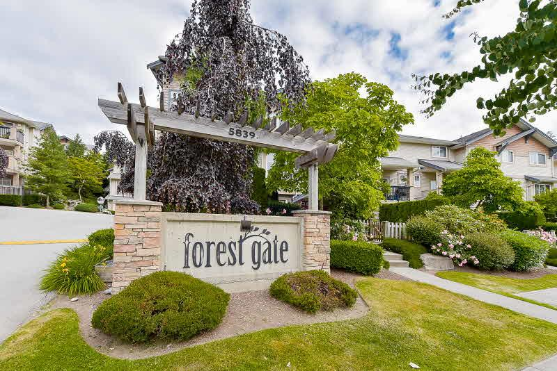 "Main Photo: 67 5839 PANORAMA Drive in Surrey: Sullivan Station Townhouse for sale in ""Forest Gate"" : MLS(r) # R2181908"