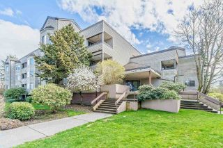 Main Photo: 110 5294 204 Street in Langley: Langley City Condo for sale : MLS®# R2271487