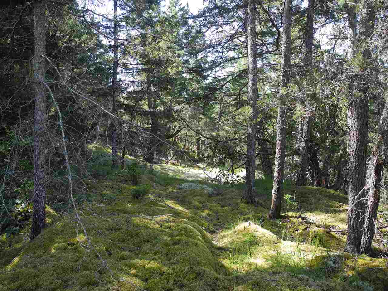 Photo 6: 4436 MCLINTOCK Road in Pender Harbour: Pender Harbour Egmont House for sale (Sunshine Coast)  : MLS(r) # R2068891