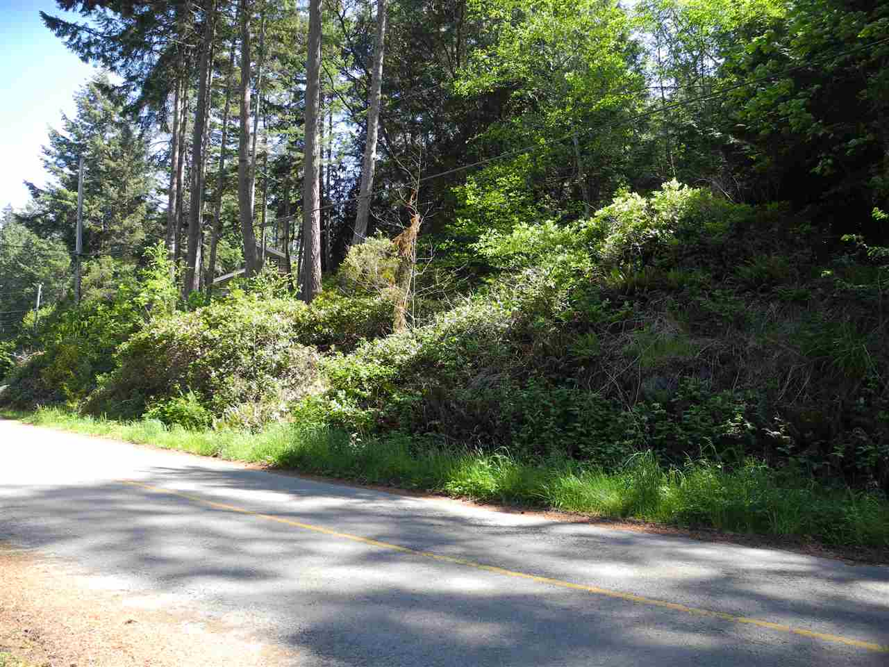 Photo 18: 4436 MCLINTOCK Road in Pender Harbour: Pender Harbour Egmont House for sale (Sunshine Coast)  : MLS(r) # R2068891