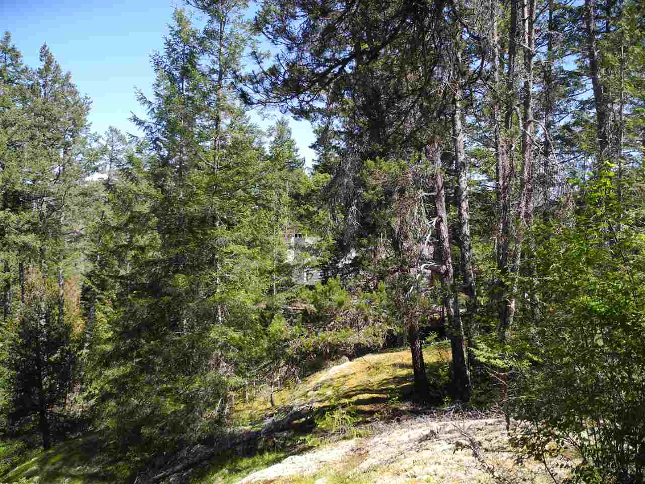 Photo 8: 4436 MCLINTOCK Road in Pender Harbour: Pender Harbour Egmont House for sale (Sunshine Coast)  : MLS(r) # R2068891