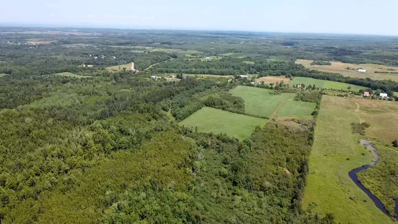 FEATURED LISTING: West Branch Road Welsford