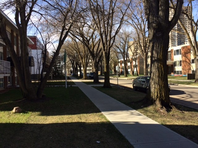 Tree lined streets for summer walks, one block to River Valley, Transit, shops and services.