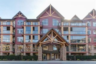 "Main Photo: 286 8288 207A Street in Langley: Willoughby Heights Condo for sale in ""Yorkson Creek"" : MLS®# R2272246"