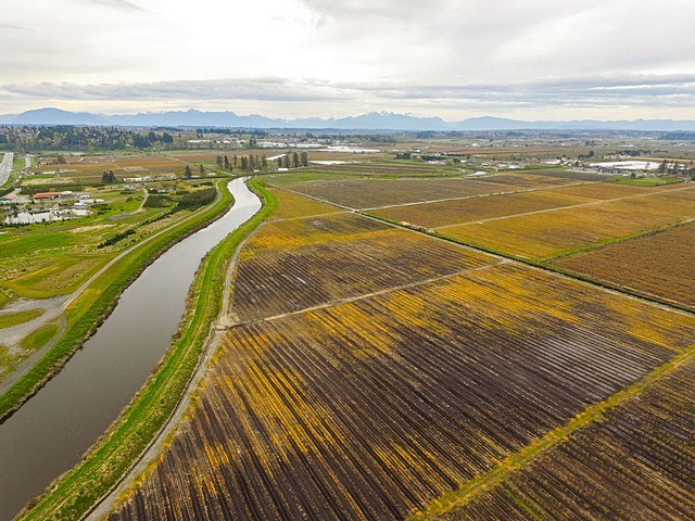 Main Photo: 14571 44 Avenue in Surrey: Serpentine Agri-Business for sale (Cloverdale)  : MLS®# C8004212