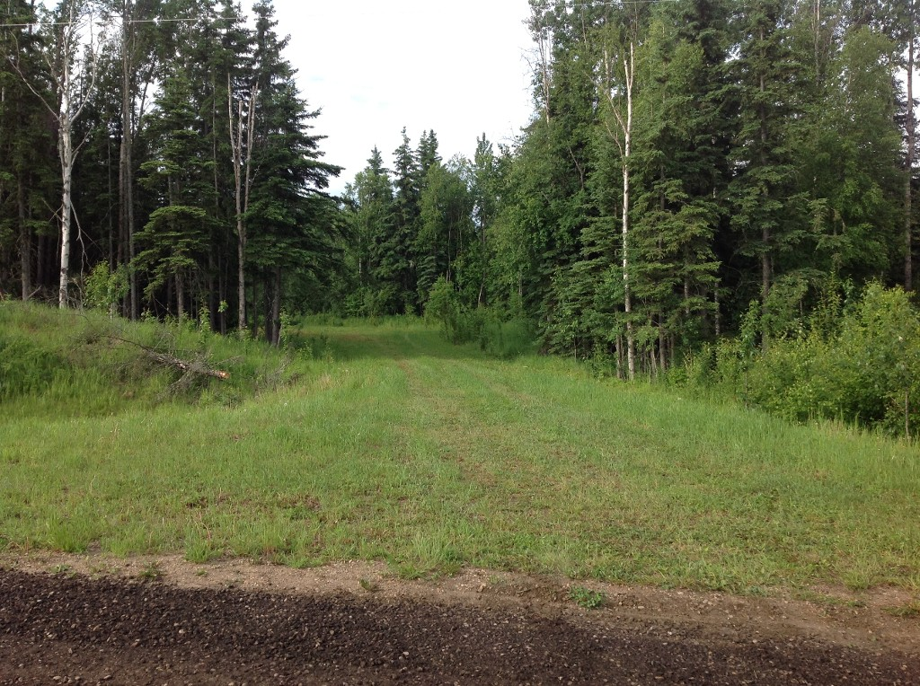 Main Photo:  in Whitecourt: Rural Land/Vacant Lot for sale (Whitecourt Rural)  : MLS(r) # 43861